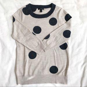 J. Crew Polka-dot Tippi Sweater